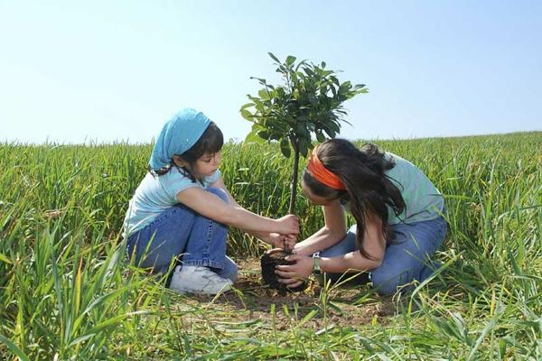 Kinder pflantzen einen Baum