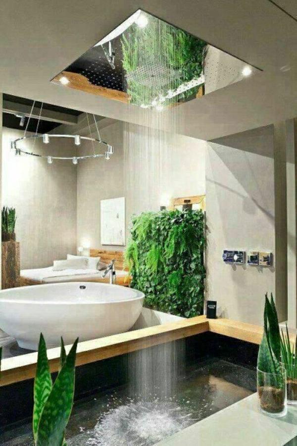 graue wandfarbe und grüne pflanzen im badezimmer mit moderner dusche
