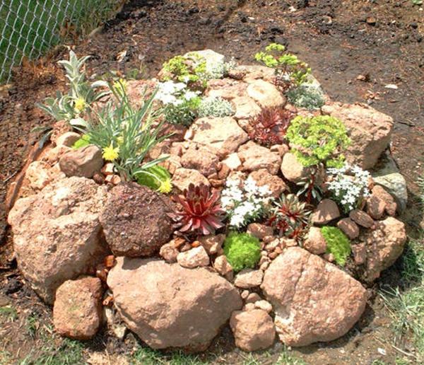 53 erstaunliche bilder von gartengestaltung mit steinen - Gartenideen pflanzen ...