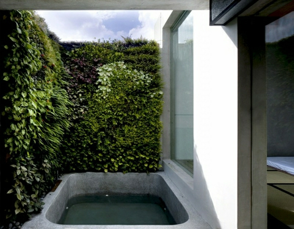 duschwanne graueßen gestalten - grüne pflanze, graue gestaltung