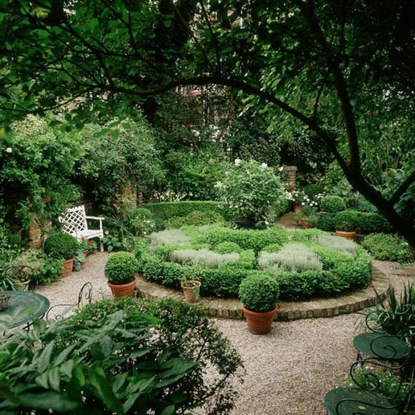 Grüne Schöne Pflanzen Für Ihren Garten