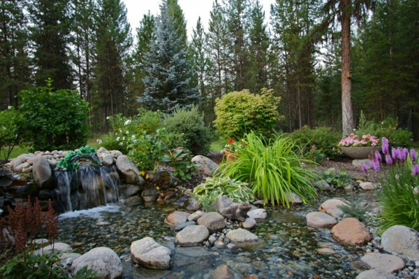 wasserspiele im teich - wald mit grünen pflanzen