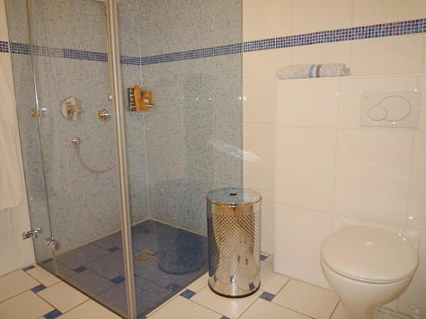 Dusche Wandverkleidung Aus Glas : Blaues durchsichtiges Glas f?r die Duschkabine ? eine wundersch?ne