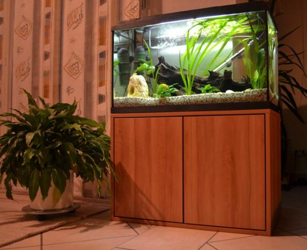 aquarium-lowboard-schrank- und eine grüne pflanze als dekoration