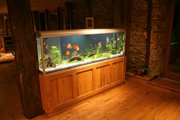 aquarium schrank schaffen sie eine exotische atmosph re zu hause. Black Bedroom Furniture Sets. Home Design Ideas