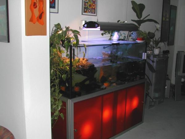 aquarium-schrank-neues-modell- rotes Licht und grüne Pflanzen