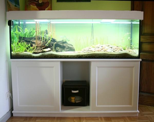 aquarium-schrank-weiße-gestaltung- moderner und schicker look