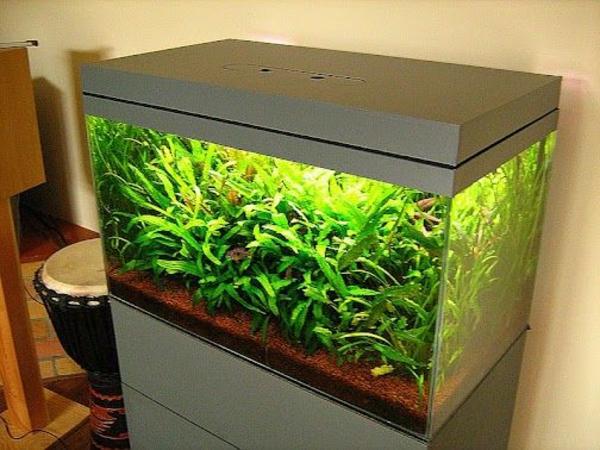 aquarium-unterschrank- komplettsett