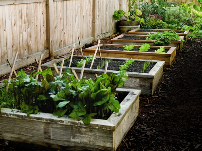 Raised Gardening Bed Ideas