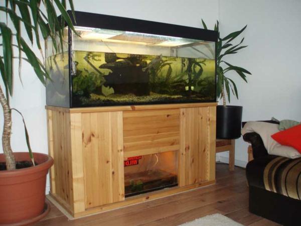 zwei große grüne pflanzen als dekoration neben einem aquarium mit einem hölzernen unterschrank