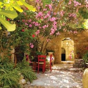 Mediterraner Garten - märchenhafte Atmosphäre schaffen
