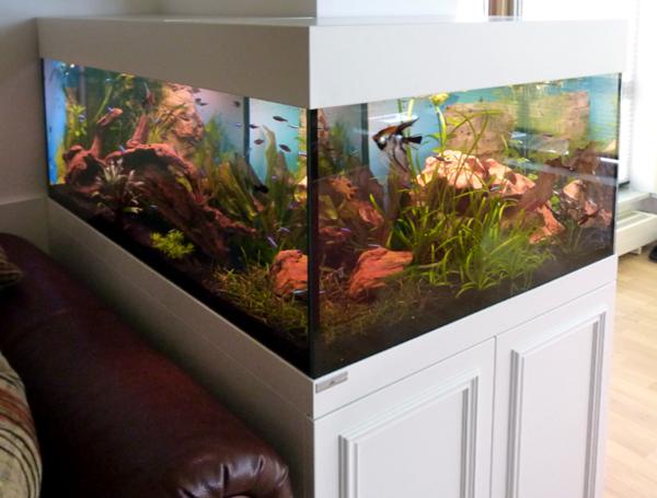 meerwasseraquarium-komplettsett- weißer unterschrank