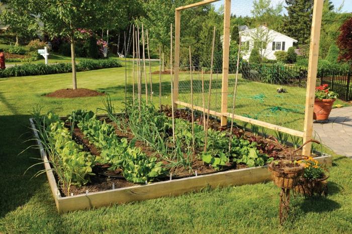 schöne-gärten-bilder-einen-modernen-garten-selbst-gestalten
