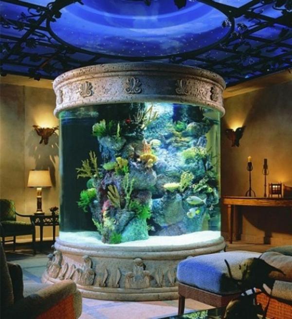 super-moderne-idee-für-aquarium- enorme größe