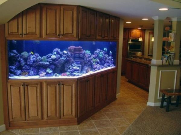 Aquarium Schrank U2013 Schaffen Sie Eine Exotische Atmosphäre Zu Hause!