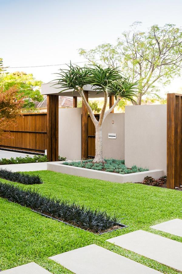 vorgarten-eines-hauses- große palme
