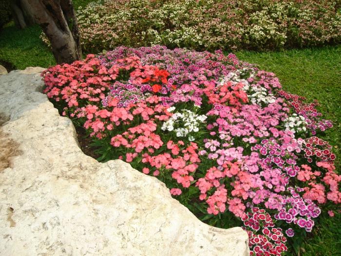 wie-gestalte-ich-meinen-garten-gartenideen-für-kleine-gärten