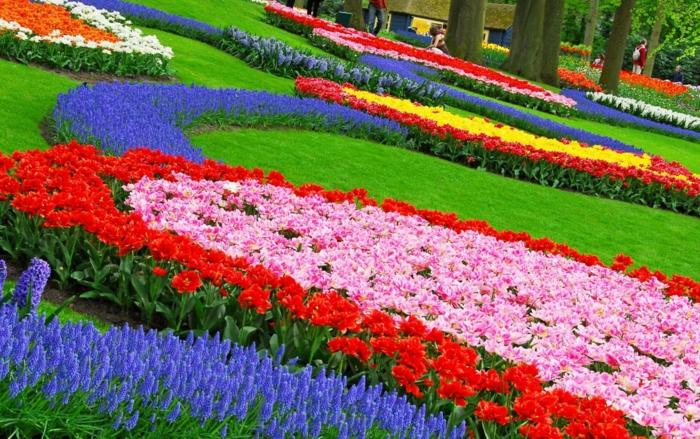 wunderschönen-blumengarten-gestalten-bunte-farben-gartengestaltung-tipps