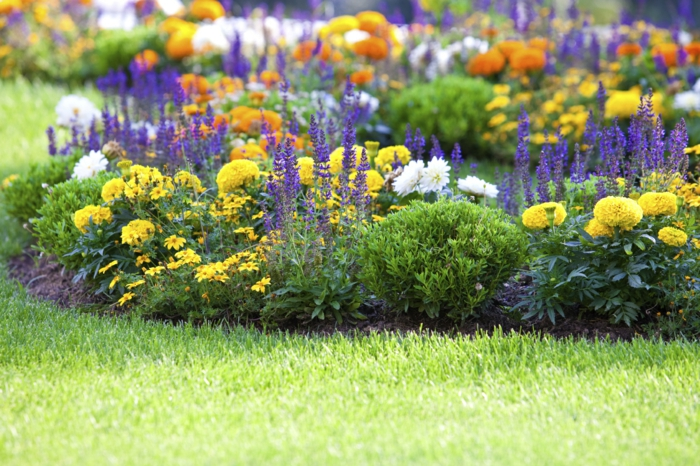 einen blumengarten anlegen - herrliche gestaltung