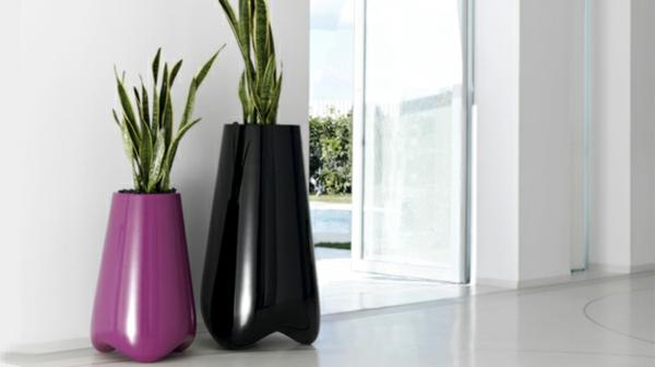 zwei-bodenvasen-in-lila-und-schwarz- mit grünen pflanzen