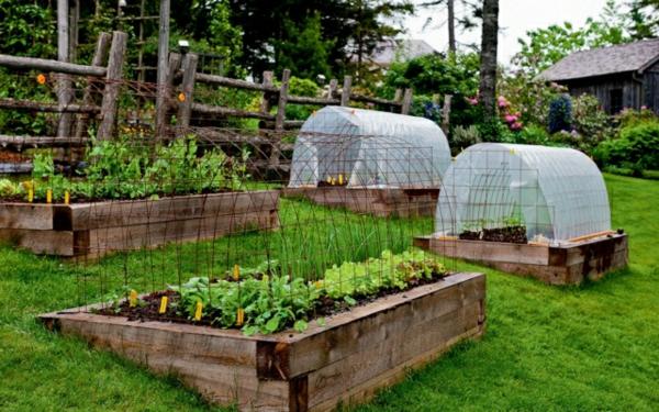 Gewächshaus-Windschutz-Hochbeete-Holz-Garten-Hang-anlegen-Gemüse-einpflanzen