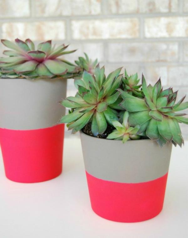 blumentöpfe-neonlicht-selber-gemacht - pflanzen in grün