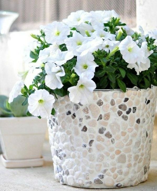 blumentöpfe-selber-machen-weiße-blümchen - zärtliches aussehen