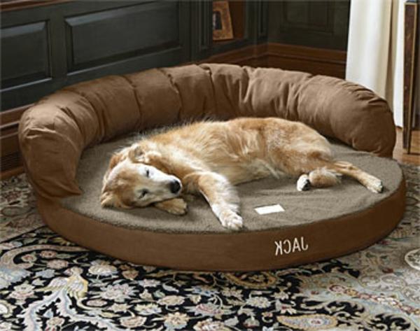 braunes-orthopädisches-hundebett-xxl - ein hund ist eingeschlafen