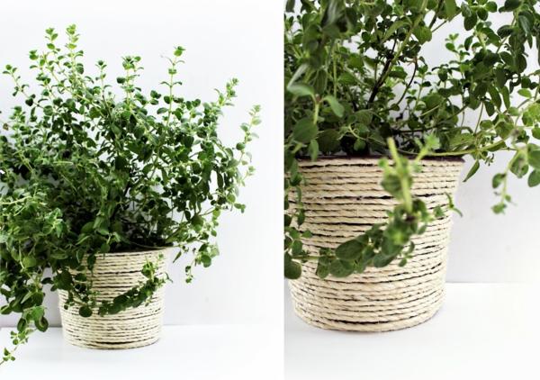 do-it-yourself-ideen-blumentöpfe - pflanze in grün