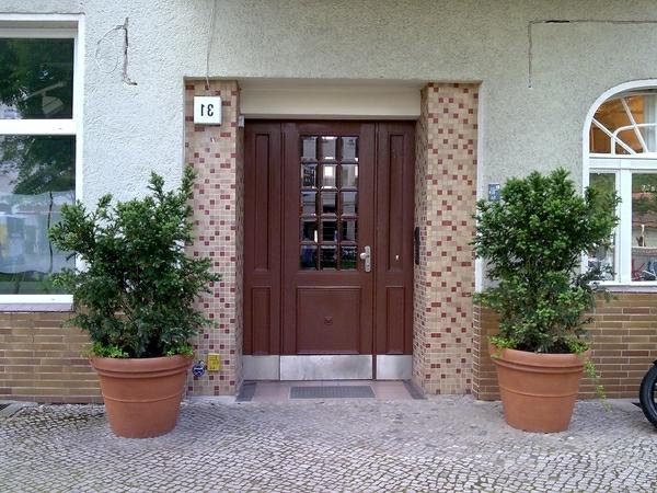 fassadenfarbe-weiß-mit-braun-kombinieren-zwei-grüne-topfpflanzen - kreativ
