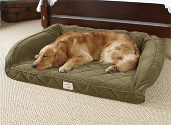 günstige-hundebetten-für-große-hunde - schränke in braun