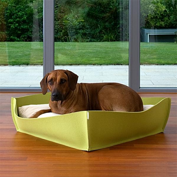 grünes-orthopädisches-hundebett- große fenster