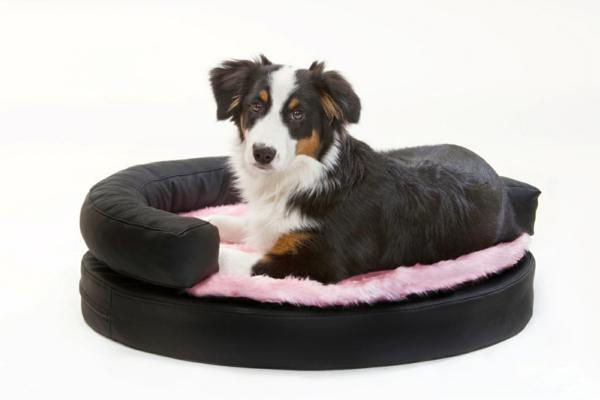 hundebett-kaufen-schwarz-mit-rosig-kombinieren - hintergrund in weißer farbe