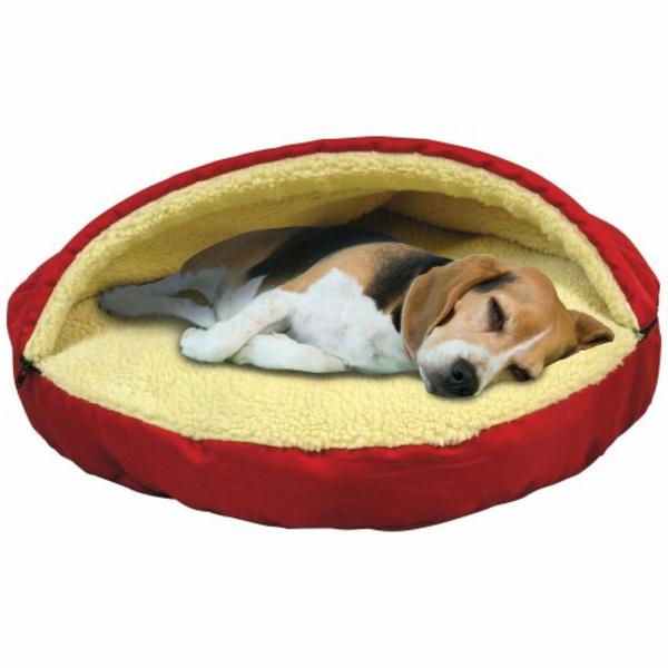 hundebette-orthopädisch-schönes-design - niedlicher hund