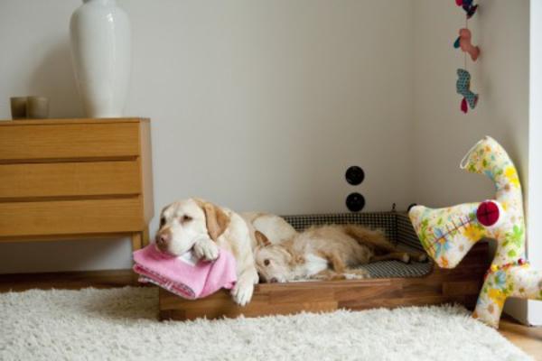 hundebetten-für-große-hunde-in-der-ecke-des-zimmers - holzschrank daneben