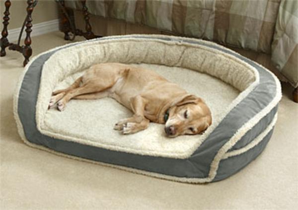 hundebetten-xxl-komfort-für-den-hund - große hunderasse