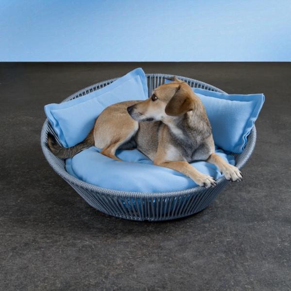 hundekörbchen-orthopädisch-blaue-kissen - moderne gestaltung