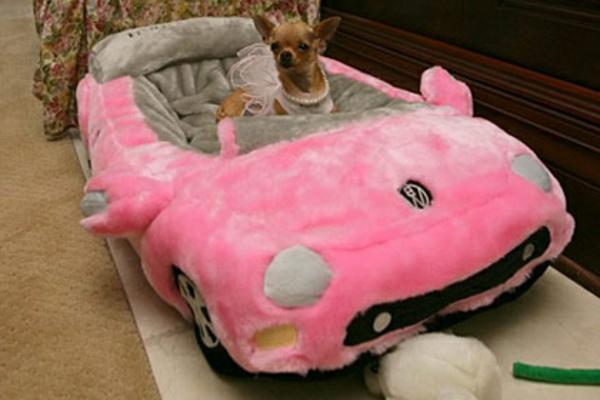 kleines-orthopädisches-hundebett-auto-form-rosige-farbe - prinzessin hund