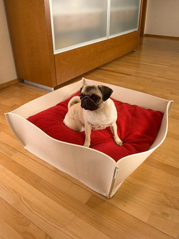 kompfort-für-den-hund-orthopädisches-hundebett-mit-roter-matte - schrank aus holz