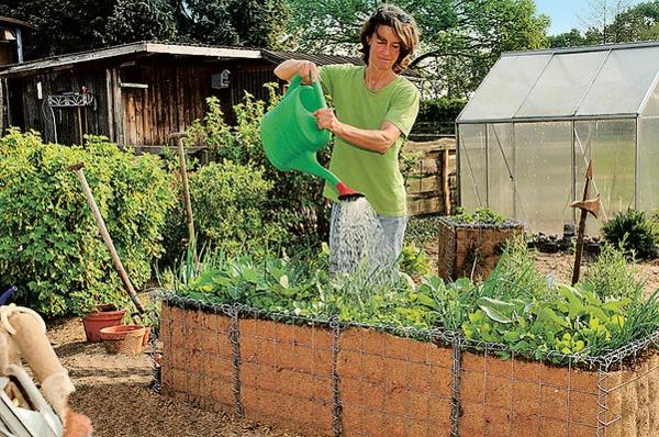 kräuterhochbeet-selber-bauen-eine-frau - gießt die kräuter