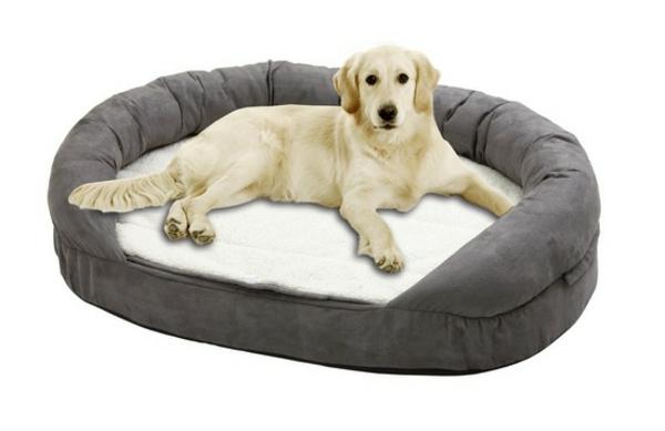 orthopädische-hundebetten-xxl-weißer-huntergrund - große hunderasse