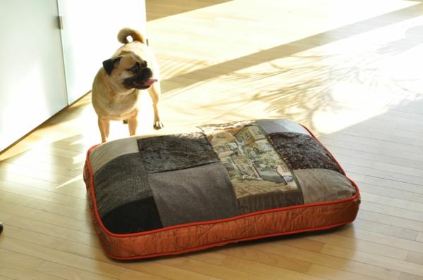 orthopädische-hundekissen-modern - daneben - ein hund