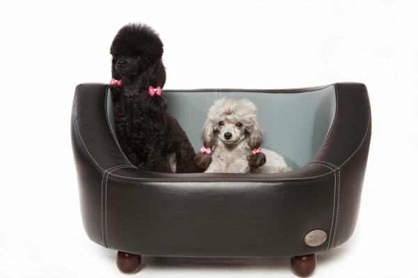 orthopädisches-hundebett-für-zwei-hunde - hintergrund in weiß