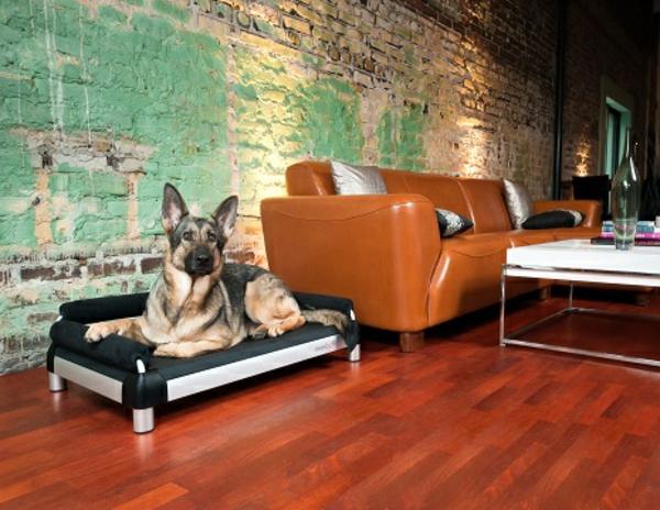 orthopädisches-hundebett-kaufen-schwarze-farbe - große hunderasse