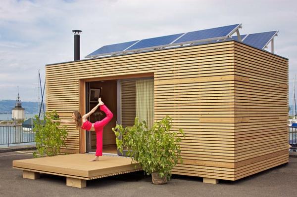 preiswerte-minihäuser-yoga - zwei grüne pflanzen vor dem haus