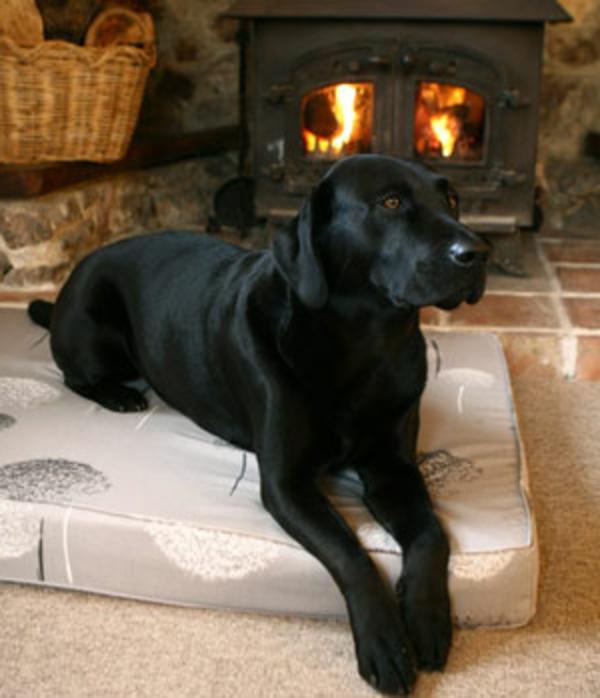 schwarzer-hund-auf-einem-orthopädischen-hundebett - dahinter - eine feuerstelle