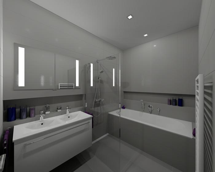 Badezimmer Grau : 3d Modell von Badezimmer in der grauen Wandfarbe