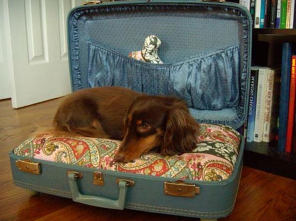 bett-für-hund-aus-koffer-selbst-machen