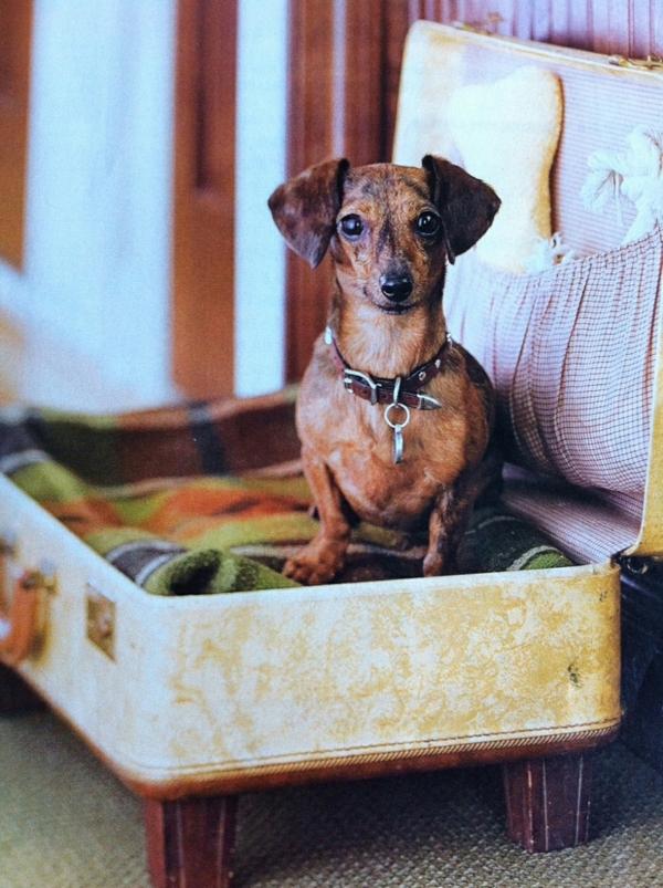 bett-für-hund-möbel-mit-vintage-look-selber-machen