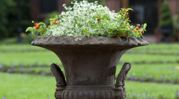 coole-idee-für-pflanzgefäße-im-garten-wunderschön wirkend